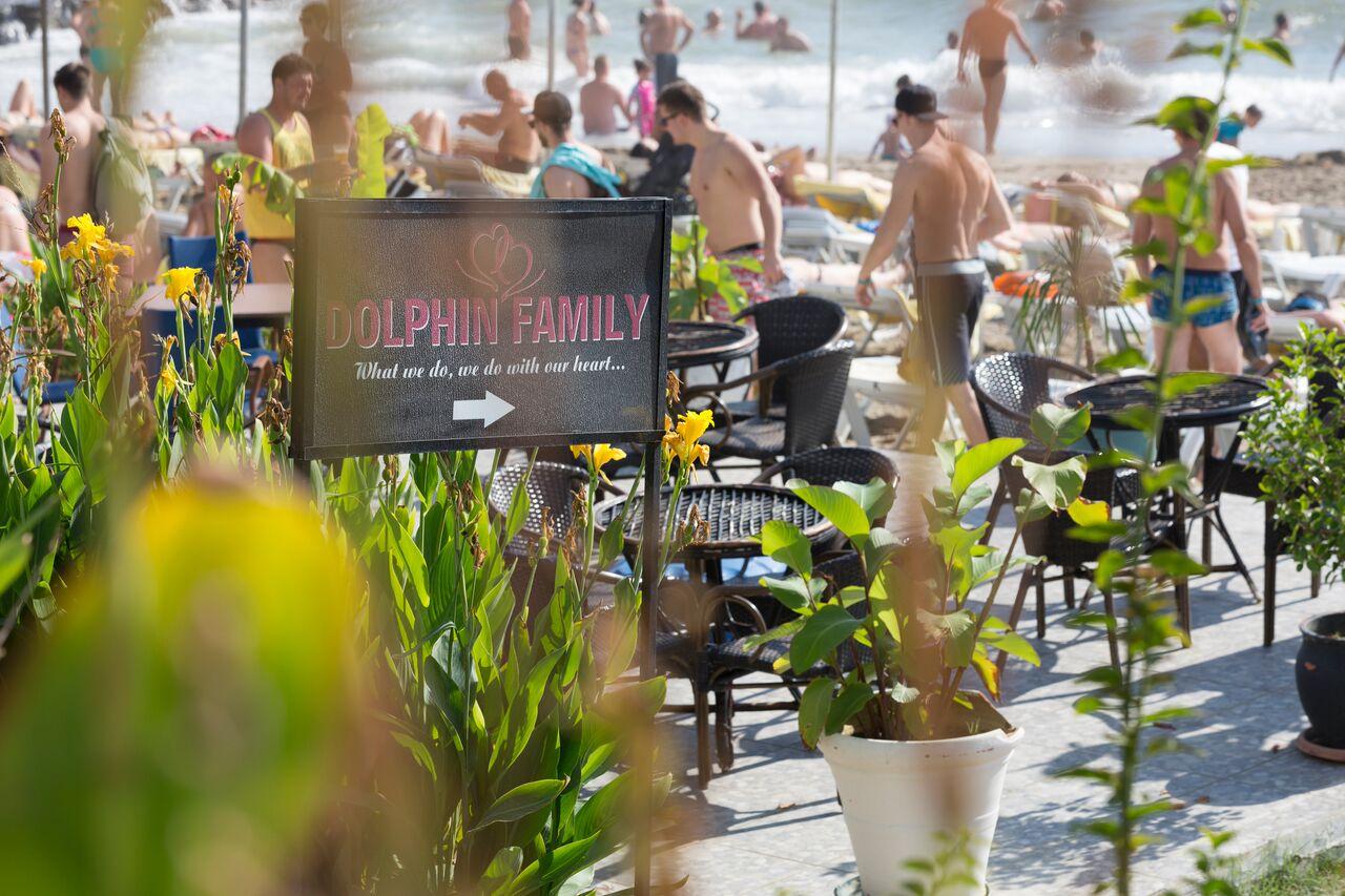 dolphin-family-alanya